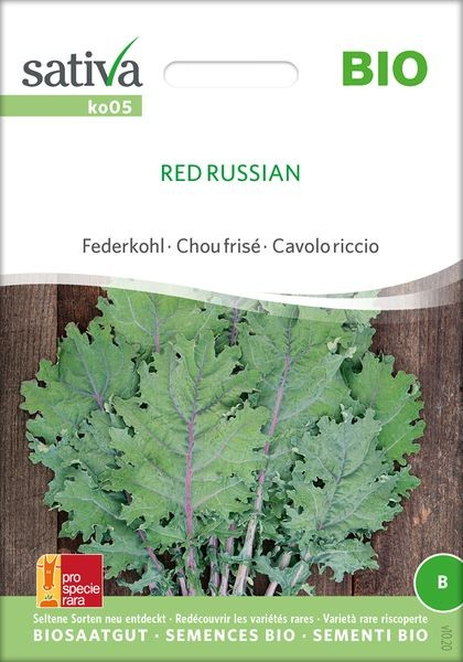 Federkohl 'Red Russian'