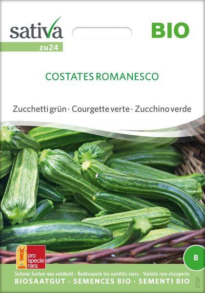 Zucchini 'Costates Romanesco' Saatgut