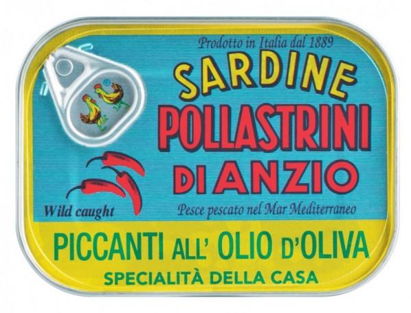 Sardine piccanti all'olio d'oliva - Sardinen in Olivenöl, pikant