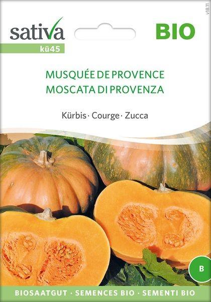 Kürbis 'Musquée de Provence' Saatgut