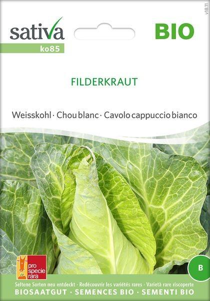 Spitzkohl 'Filderkraut' Saatgut